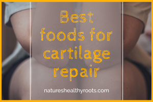 best foods for cartilage repair